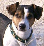 Profilbild von Martha123
