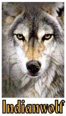 Profilbild von Indianwolf
