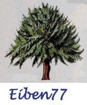 Profilbild von eiben77