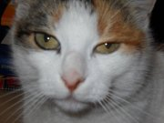 Profilbild von MiniundMaxi