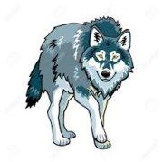 Profilbild von loupgris