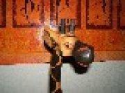 Profilbild von Langhalskatze